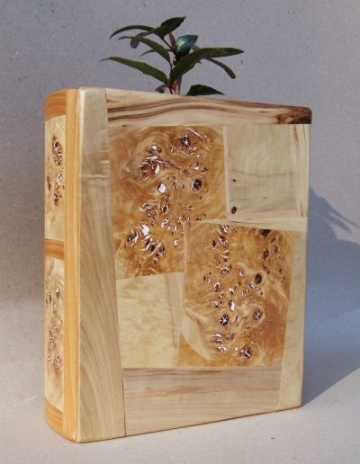 1 kniha váza