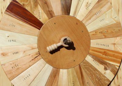 Dřevokruh